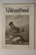 Deutsche Jagdzeitung Wild und Hund Nr. 49 - 1927 !!