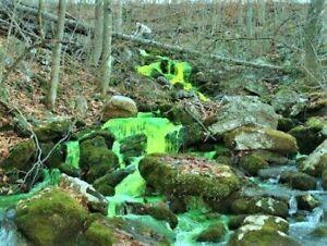 Rekhaoil® Tracer dye Detect leaks in sewage systems , 8 OZ BOTTLE