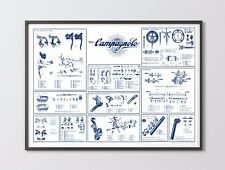 Campagnolo Record / Nuovo Record groupset poster 1973