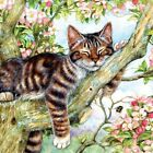 Sleepy Cat 500 Pc Jigsaw Puzzle By SUNSOUT INC For Sale