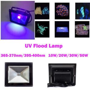 10W 20W 30W 50W UV Glue Curing 395nm 365nm High Power LED Floodlight lamp Light