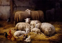 Beautiful Oil painting sheep and chickens in a farm interior free shipping cost