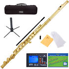 NEW GOLD SCHOOL BAND STUDENT C FLUTE w/ Split E