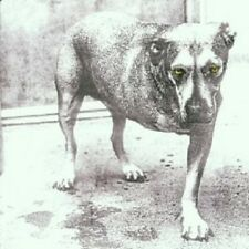 """ALICE IN CHAINS """"ALICE IN CHAINS"""" CD NEW+"""