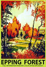 Art Ad Essex Epping Forest LNER  Train Rail Travel  Poster Print