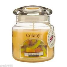 Mango COLONY Scented Candles Lights