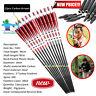 6/12x Carbon Arrows Turkey feather f20-50lbs Longbow Recurve Bow Hunting Archery