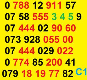 New Vodafone GOLD VIP BUSINESS EASY MOBILE PHONE NUMBER SIM CARD ee O2 Lebara UK