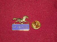 VINTAGE PIN PINBACK OH! KENTUCKY HORSE