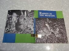 Rabbits in The Meadow by Lilo Hess - 1st Ed DJ Only! No Book!
