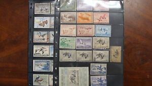 US DUCK STAMP LOT USED DUPLICATION