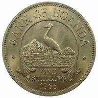 (*M37) - Uganda - 1 Shilling 1966 - Kronenkranich Vogel Bird - UNC - KM# 5
