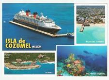 Cruise Ship  pc ... Disney Magic,   aerial view  docked in  Isla de Cozumel MX
