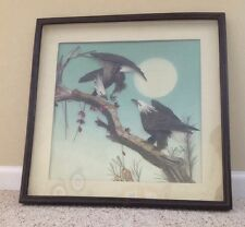 Vintage Bald Eagle 3D Wall Picture Frame Encased Glass - Real Game Bird Feathers