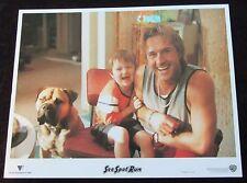 SEE SPOT RUN lobby cards DAVID ARQUETTE