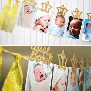 AM_ 1st Birthday Recording 1-12 Month Photo Banner Garlands Monthly Bunting Deco