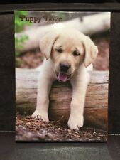 Papurus-Four blank puppy love  note cards - (Set of 20) cards 5 ea of 4 designs