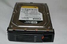 RIVERBED STEELHEAD WESTERN DIGITAL WD2502ABYS 250GB SATA HARD DRIVE RM31903-08B