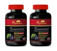 antioxidant supplement - RESVERATROL 1200MG 2B - resveratrol 1000 mg