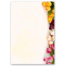Briefpapier BUNTE TULPEN DIN A4 Format 50 Blatt