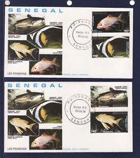 ASg/ Sénégal    enveloppe  1er jour  expo faune poissons     1988