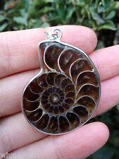 Hot! New Spiral ammonite Fossil Gem Stone shell Pendant