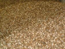 Épeautre en Vrac Bio 5 kg pour Remplissage D'Oreiller Matériau de Matière