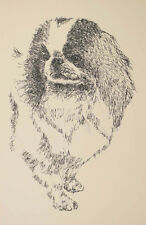 Japanese Chin Dog Art Portrait Print #30 Kline adds dog name free. Word Drawing