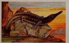 c1900 TEDESCA STAMPA ARCHEGOSAURUS PREISTORICO DINOSAURO ANIMALE der Urwelt