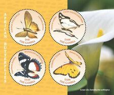 Gambia 2018  fauna  African Butterflies  I201901