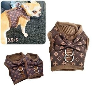 Designer Dog Chewy Louwi Chihuahua Dog Puppy Kitten Escape Proof Harness