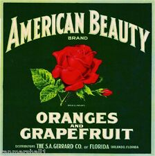 Orlando Florida American Beauty Red Rose Orange Citrus Fruit Crate Label Print