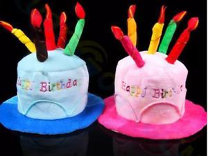 BLUE/PINK HAPPY BIRTHDAY CAKE HAT Kids Adult Headwear Fancy Dress Party Candles