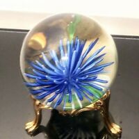 Vintage Round Paperweight Hand Blown Glass Art Sea Life