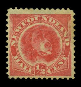 NEWFOUNDLAND 1887  Newfoundland Dog  ½c rose red  Scott 56 mint MH