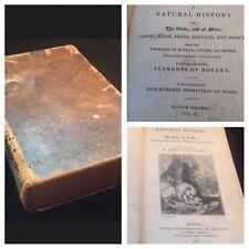 1831 *ILLUSTRATED* Buffons Natural History The Globe And Of Man, Vol. II