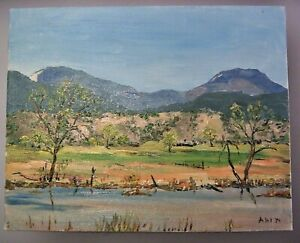 HENRY CURTIS AHL SOUTH WESTERN OIL PAINTING OF RIO GRANDE VALLEY