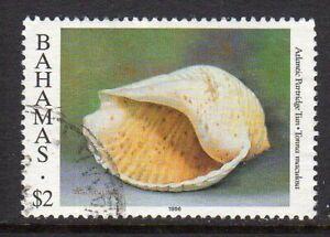 Bahamas 1996 Sea Shell $2 fine used