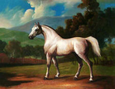 ZOPT74 100% hand painted animals horse landscape ART OIL PAINTING ON CANVAS