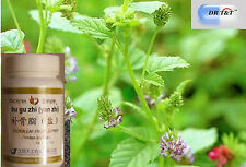 DR T&T Malaytea Scurfpea Fruit/Fructus Psoraleae/bu gu zhi concentrate powder1:7