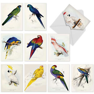 10  All Occasion Blank Cards Assortment - BIRDS OF A FEATHER M6034