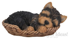 Vivid Arts - PET PALS PUPPY DOG IN BASKET & YORKIE BOX - Yorkshire Terrier