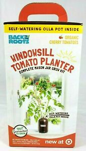 Organic Cherry Tomato Plant Self-Watering Planter Rich Soil Kitchen Classroom