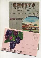 Vintage 1964 KNOTT'S BERRY FARM Menu & 1960's Foldout Postcard View Book