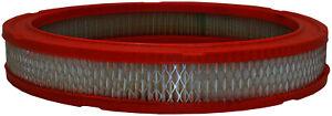 Fram CA3425 Air Filter fits FA641R FA982 FA1027 42141 2141 A40131 AF641 AF801