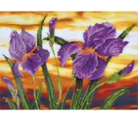Diamond Painting Kit Dotz 5D 2D Rhinestone IRIS SUNSET 52 x 37cm Round