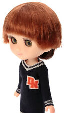 Petworks Sekiguchi Odeco Chan doll Wig two tone Brown x deep Brown