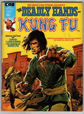 The DEADLY HANDS Of KUNG FU Magazine #4 Carradine Painted Cover by Neal Adams