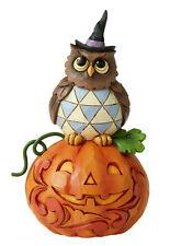 Jim Shore*Mini Owl on Pumpikin*New 2020*Nib*Halloween*Buy More & Save*6006704