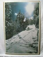 STARLIGHT SNOW SKIING 1978 VINTAGE POSTER SKI SKIER CNG1043